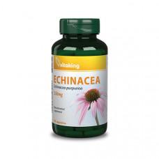 Echinacea (Bíbor kasvirág) kivonat 250mg